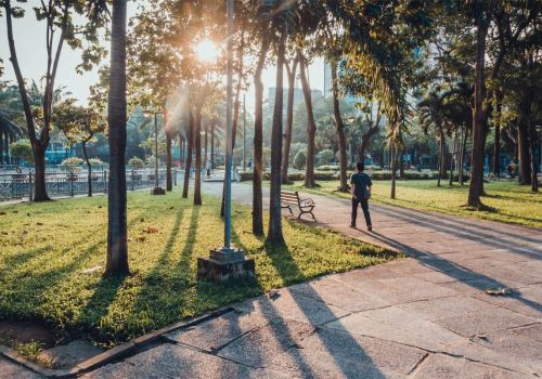 Ho Chi Minh City to build additional 650 hectares public parks in next 10 years